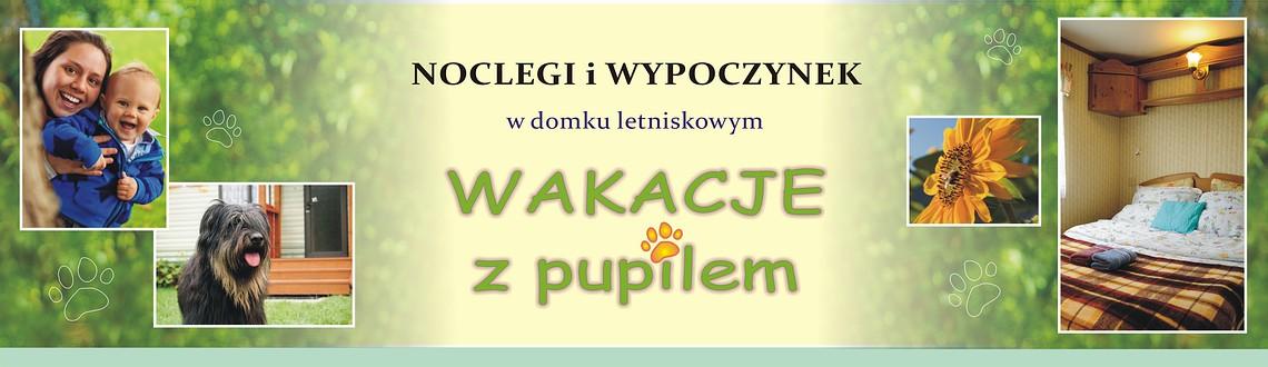 Noclegi Zwierzyniec Roztocze w domku letniskowym na ogrodzonej działce.